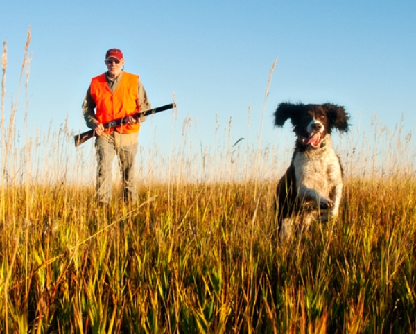 Bird Hunting Central Montana