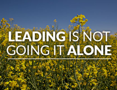 Leading is not going it alone