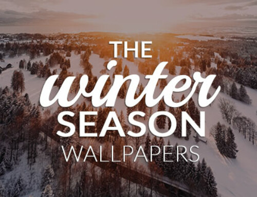 The Winter Season: Free Wallpapers