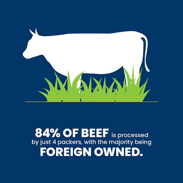 84% of beef is processed by just 4 packers