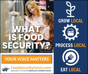 Food Security digital ad of a mother in a grocery store with her daughter