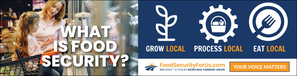 What is food security digital ad