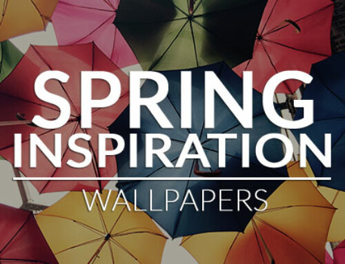 Spring is Blooming – Free Wallpapers